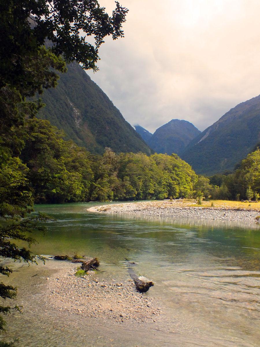 New Zealand 11