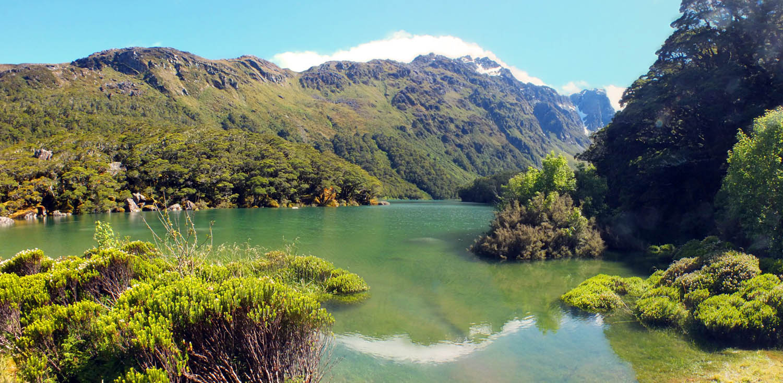 New Zealand 18
